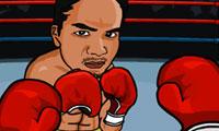 Boxeo en vivo