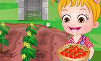Малышка Хейзел выращивает помидоры